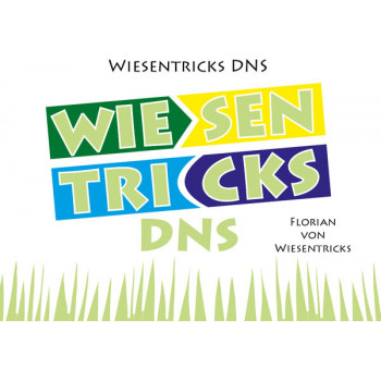 Wiesentricks DNS